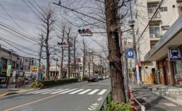 文京区エリア 白山駅周辺